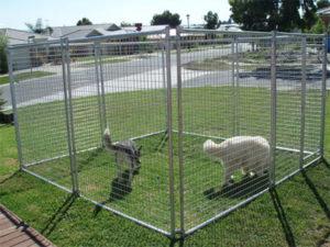Spot on pet enclosure